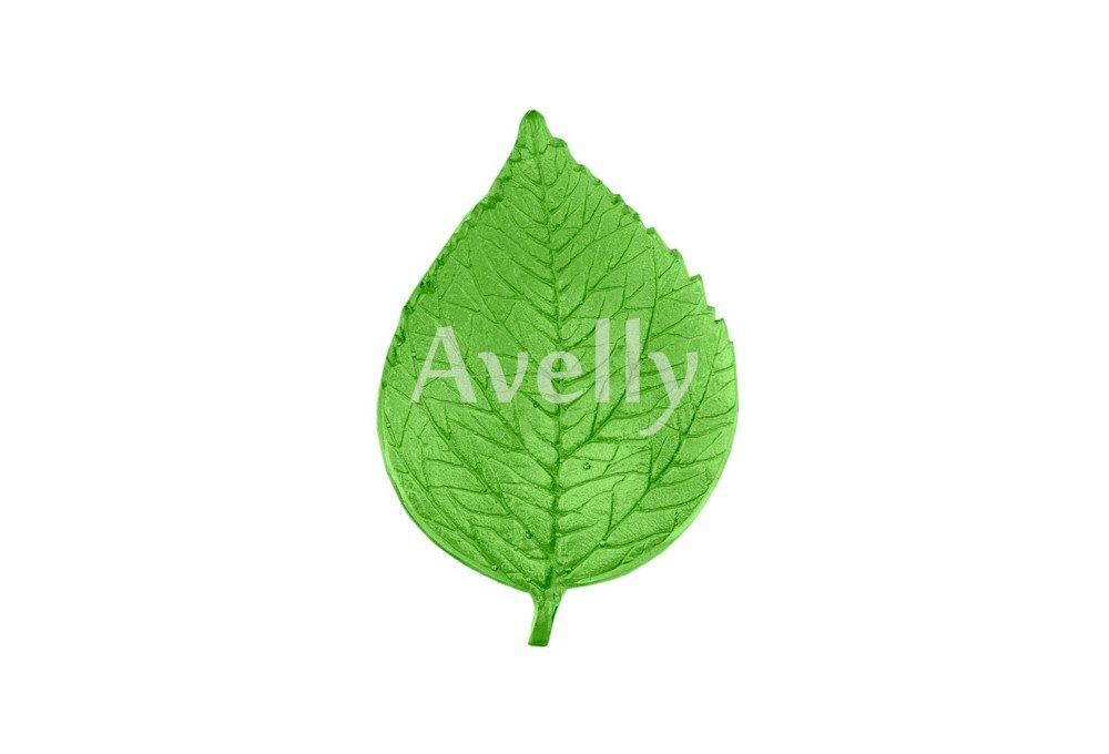 Текстурный молд лист гибискуса
