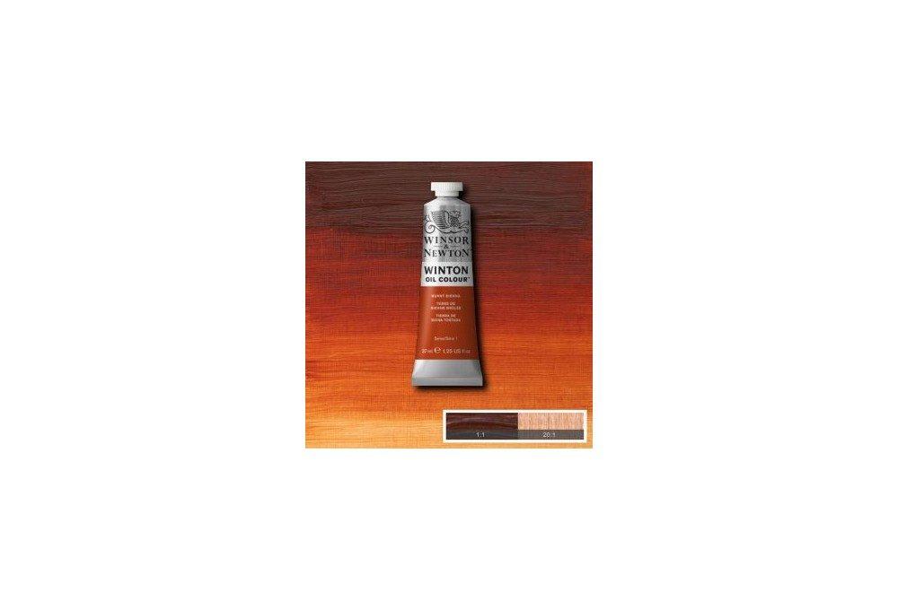 Выкраска масляной краски Winton Жженая сиена (Burnt Sienna)