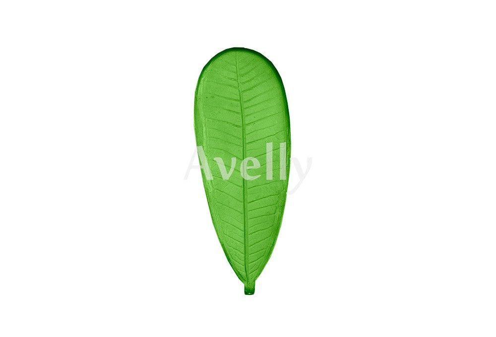 текстурный молд лист плюмерии большой