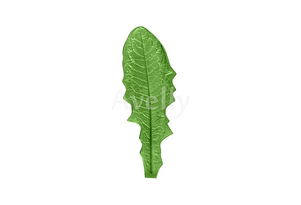 текстурный молд лист одуванчика