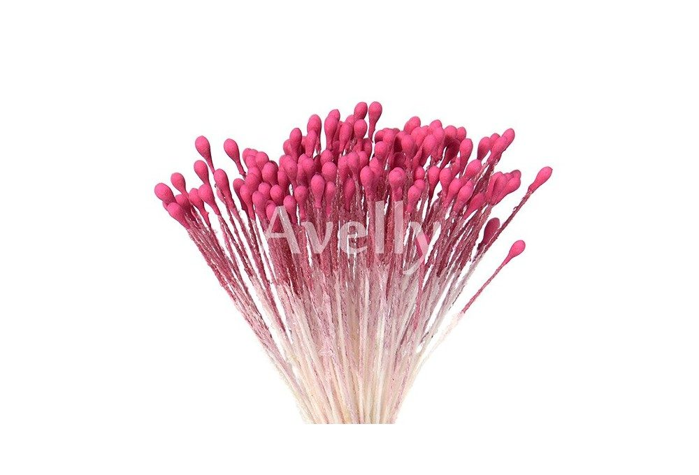 Тычинки средние фуксия розовые
