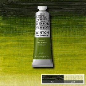 Масляная краска Зеленая крушина (Sap green) №37, Winsor&Newton, 37 мл