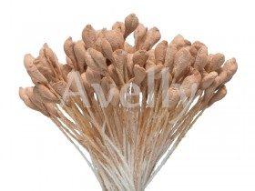 """Тычинки для цветов, """"печеное яблоко"""", 288 шт, Китай"""